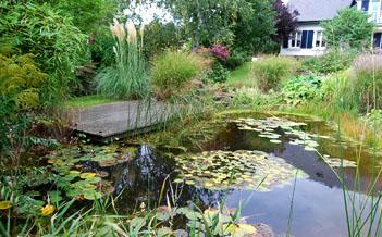 Jardinier Paysagiste La Main Verte. Spécialiste en aménagements d'espaces verts et créations de paysages à Luxembourg